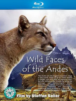 Дикая природа Анд / Wild Faces of the Andes  (2011) HDTVRip
